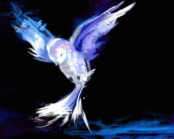 Bird-Illustration